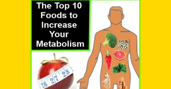 the top 10 foods to increase your metabolism
